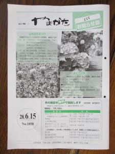 IMG_0255-2